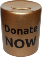 donate-now-piggy-bank